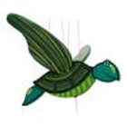 Turtle Mobile