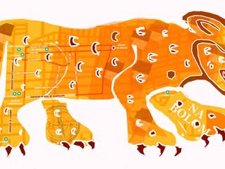 Boletín del Jaguar. El blog de Na Bolom