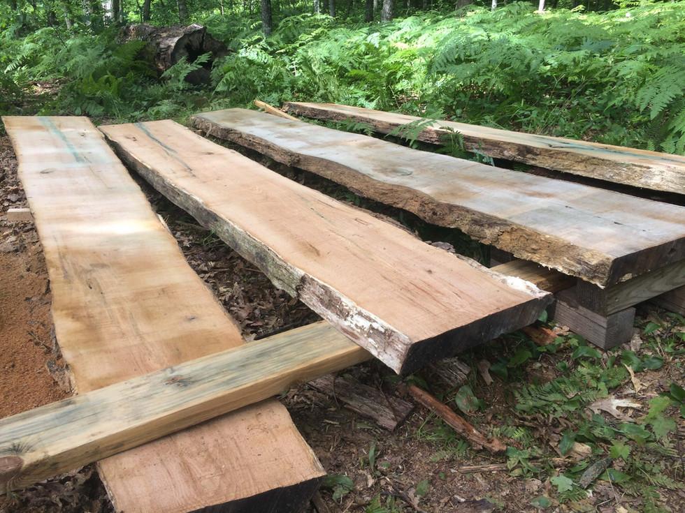 Red Oak Slabs - 12 ft long.jpg