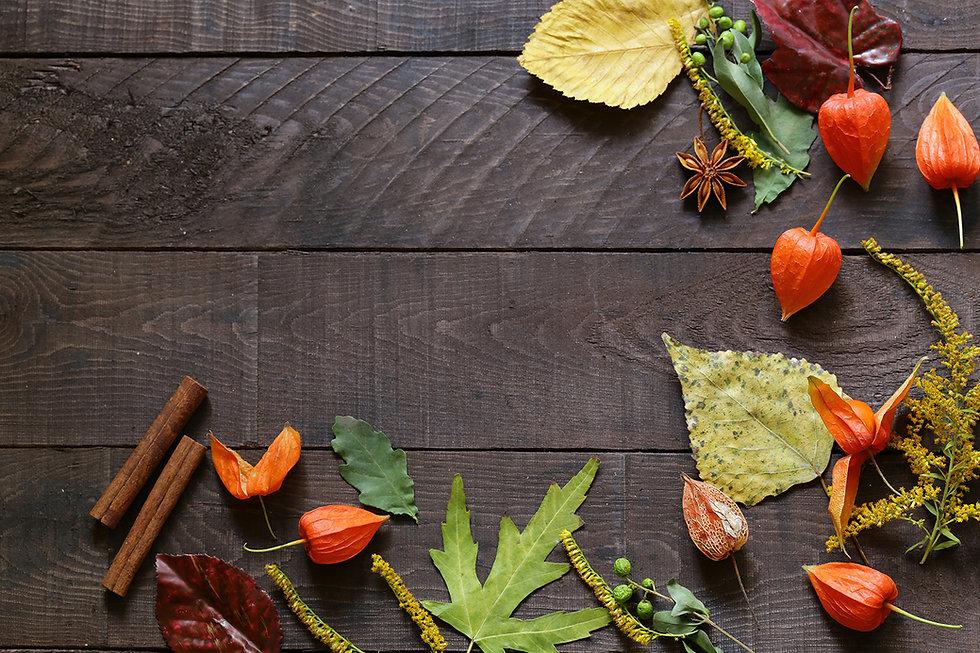 Pieville-autumn-background.jpg