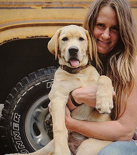 Grown Labrador Dog with Kylie