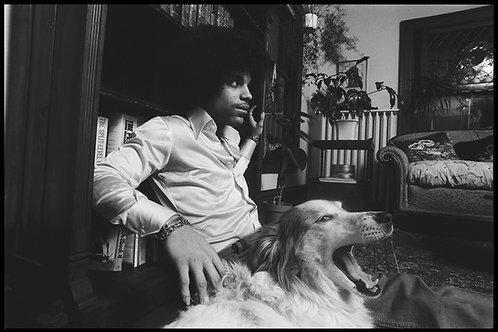 Prince With Dog