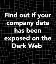 Dark Web homepage thumbnail.png