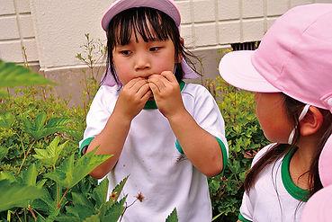 04環境_09.jpg