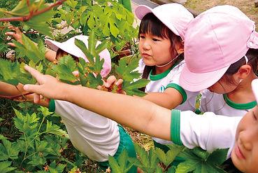 04環境_08.jpg