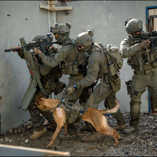 Counter Terror Warfare Team in action