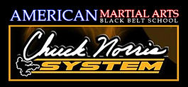 American Martial Arts logo.jpg