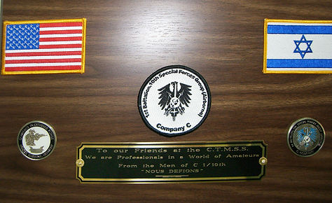 C Company Special Forces Shield.jpg