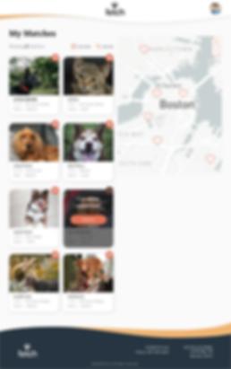2.01 Liked pets_Web B.png
