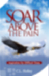 Soar_cover_kindle_020519.jpg