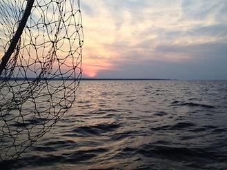 Forfait de pêche sur le lac Ontario