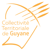 logo-ctg_edited.png