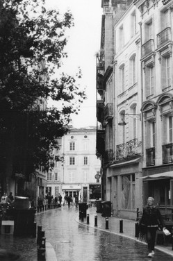 rue saint dominique.jpg