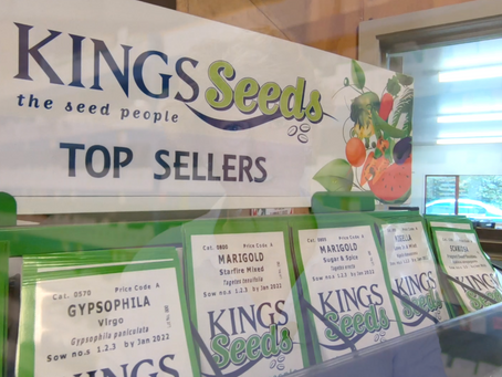 Kings Seeds | Growing for the future