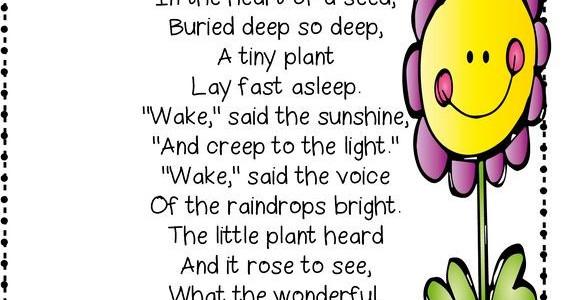 a Little Plant Poem.jpg