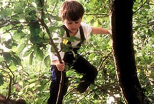 Risk taking is beneficial to children. Saplings Nursery risky play