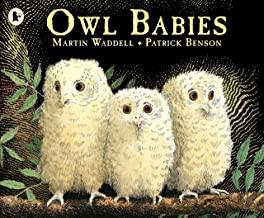 owl babies.jpg