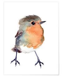 robin watercolour.jpg