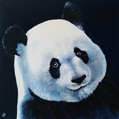 Lucille le panda