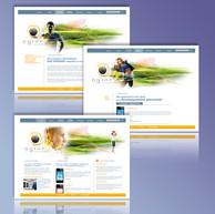 Web design N-GINE