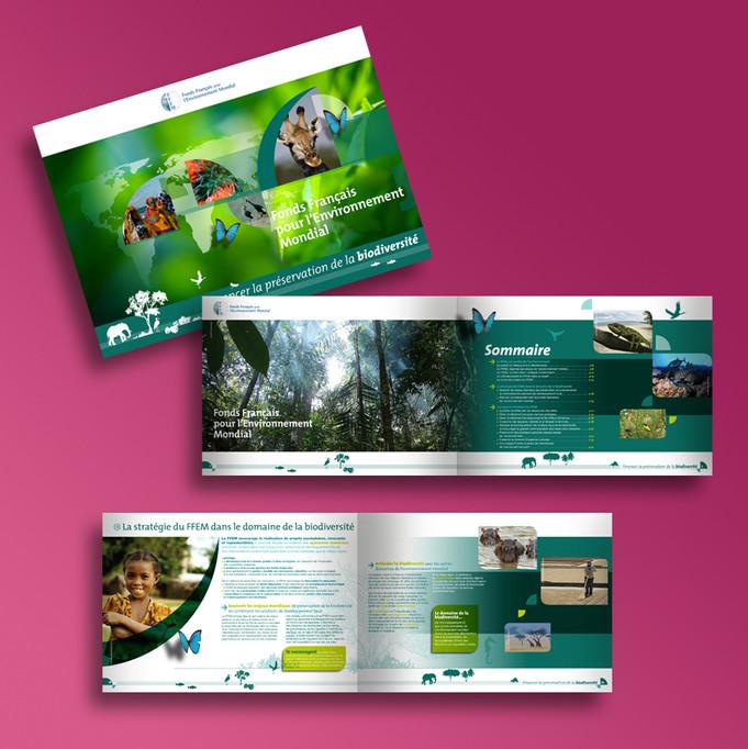 22_Brochure-FFEM-Biodiversité_VP.jpg
