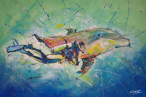 Plongeur et dauphin