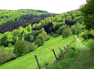 België-Ardennen-en-Oostkantons_2.jpg