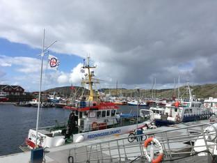 Svolvaer, îles Lofoten, Norvège