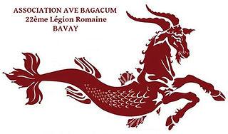 Légion romaine - association de reconstitution - AVE BAGACUM
