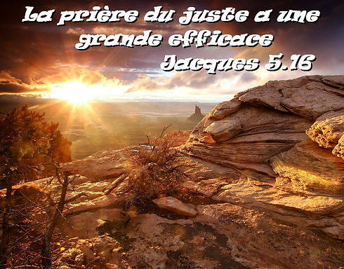 jacques_5_16.jpg