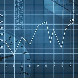 Borsa Şeması