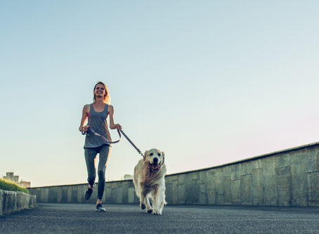 Best Dog Breeds for Running