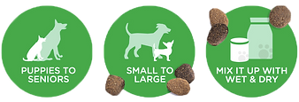 00358_Dog_Icons.png