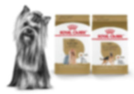 Royal Canin Brand Page Breed 2020-03.jpg