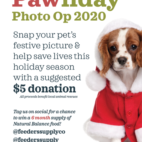 Support Local Adoption Groups during our Pawliday Photo Op