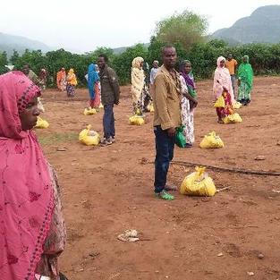 Crop seed Provision through Fair in Melkabelo Woreda (DFSA).