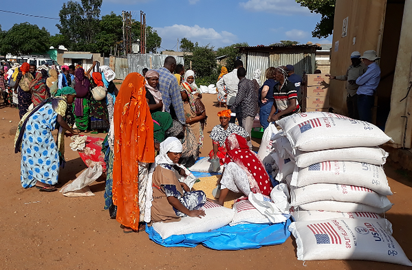 Emergency Food Distribution.png