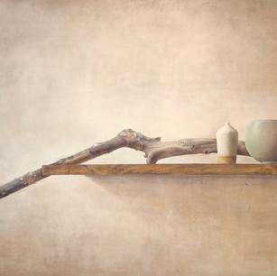 朽ちた木と陶器の静物 driftwood and china