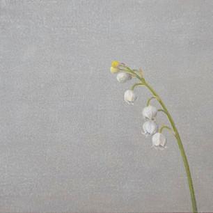 鈴蘭 lily of the valley