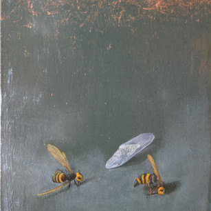 蜂 bees