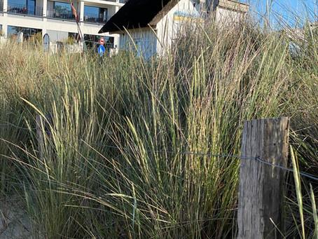 Travel Ostseeküste Scharbeutz : HOTEL BAYSIDE , FRONTLINE BEACH