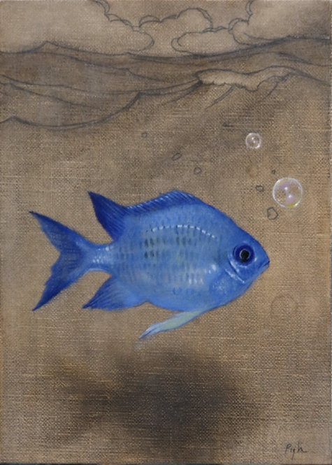 """""""Blue Fish"""" Supports Reef Life Foundation"""