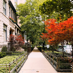 Chicago Streetview