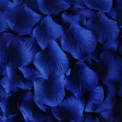 Coloured Confetti Petals