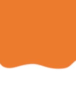 fundo_laranja.png
