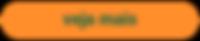 bota%CC%83o-veja-mais_edited.png