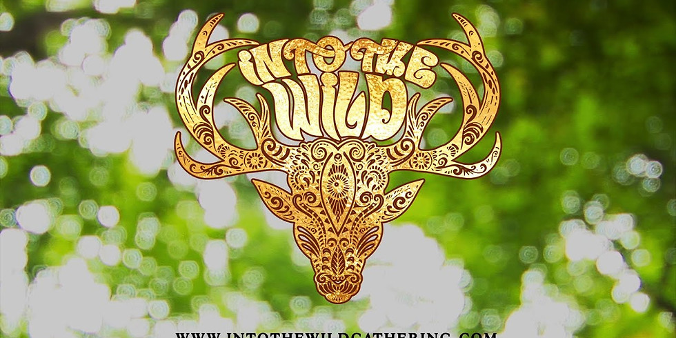 5Elements Dance at Into the Wild Gathering