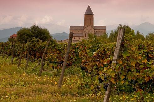 Alaverdi, Grapes, kakheti.jpg