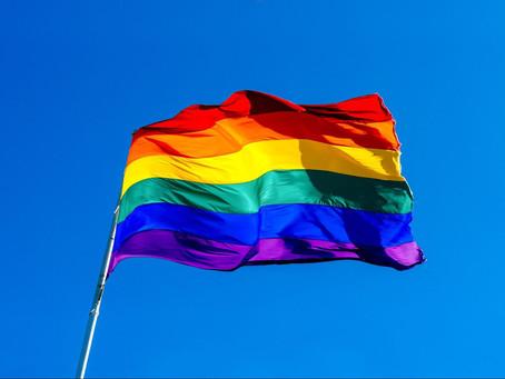 How Fan Communities Can Be LGBTQ+ Allies 🏳️🌈