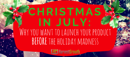 Launch Your Product BEFORE Holiday Madness - PLUS $1,000 Off Our Perfect Launch Package!